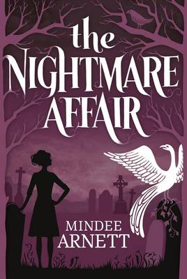 The Nightmare Affair (Hardback)