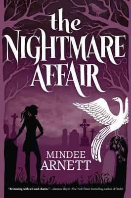 The Nightmare Affair (Paperback)