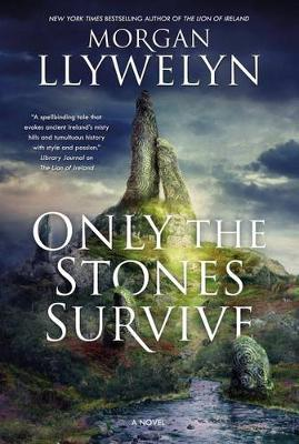 Only the Stones Survive: A Novel (Hardback)
