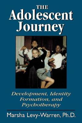 The Adolescent Journey (Paperback)