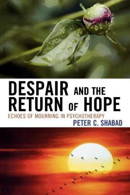 Despair and the Return of Hope: Echoes of Mourning in Psychotherapy (Paperback)