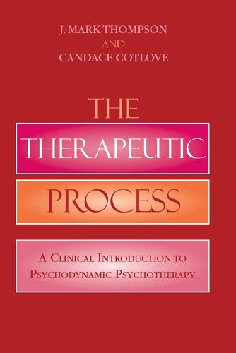 The Therapeutic Process: A Clinical Introduction to Psychodynamic Psychotherapy (Paperback)