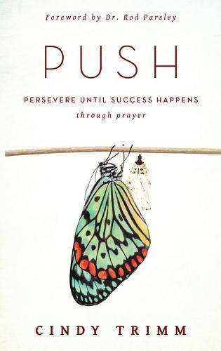 Push (Hardback)