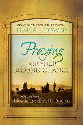 Praying for Your Second Chance: Prayers from Deuteronomy & Numbers (Paperback)