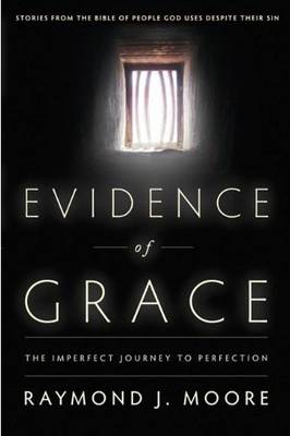 Evidence of Grace: The Imperfect Journey to Perfection (Paperback)