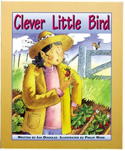 Clever Little Bird: Set C Emergent Guided Readers - Storyteller Setting Sun (Paperback)