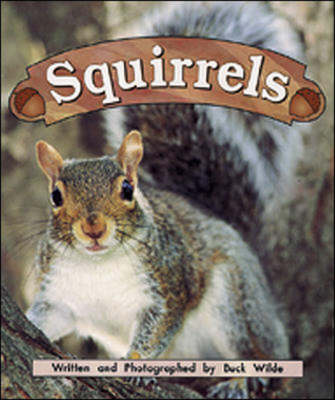 Squirrels: Night Crickets - Storyteller Non-fiction (Paperback)