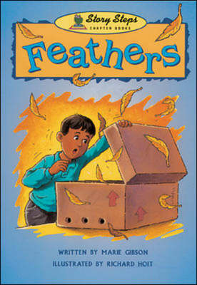 Feathers - Storyteller (Paperback)