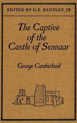 The Captive of the Castle of Sennaar: An African Tale (Hardback)