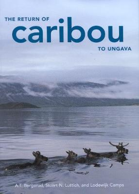 The Return of Caribou to Ungava - McGill-Queen's Native and Northern Series (Hardback)