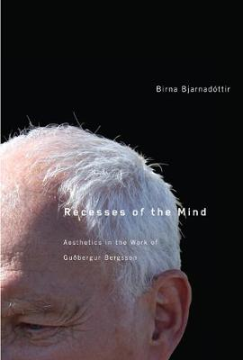 Recesses of the Mind: Aesthetics in the Work of Gudbergur Bergsson (Hardback)