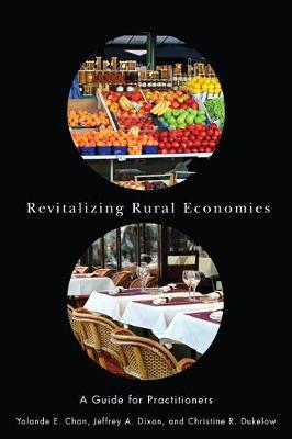 Revitalizing Rural Economies: A Guide for Practitioners (Hardback)