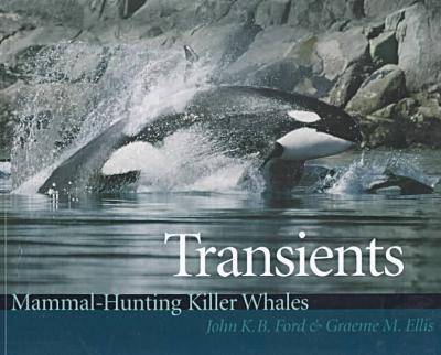 Transients: Mammal-Hunting Killer Whales of B.C., Washington State, and Southeast Alaska (Paperback)