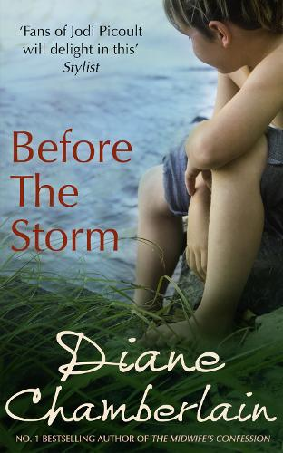 Before the Storm (Paperback)