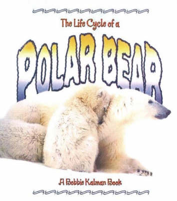 The Life Cycle of the Polar Bear (Paperback)