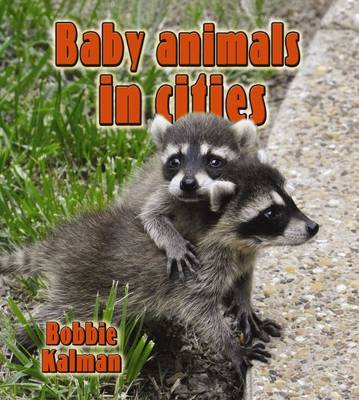 Baby Animals in Cities - The Habitats of Baby Animals (Paperback)