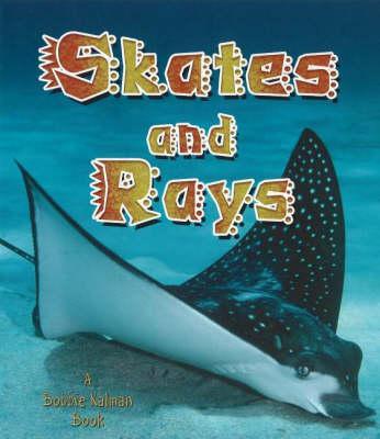 Skates and Rays (Hardback)