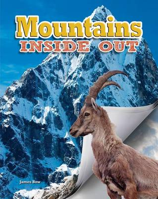Mountains - Ecosystems Inside Out (Paperback)