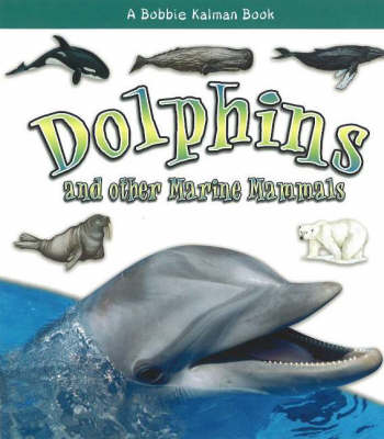 Dolphins and other Marine Mammals - What Kind of Animal Is It? (Hardback)