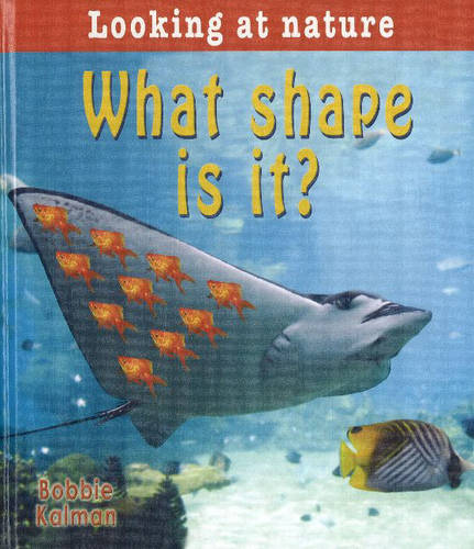 What Shape is It? (Hardback)