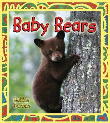 Baby Bears - Its Fun to Learn About Baby Animals (Hardback)