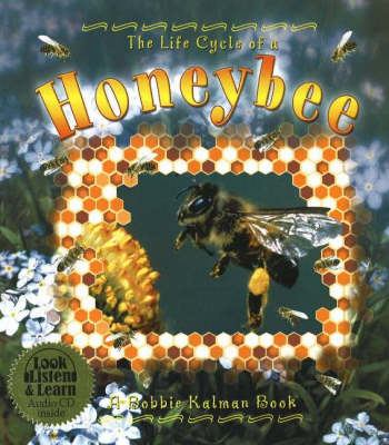 The Life Cycle of a Honeybee - Life Cycle