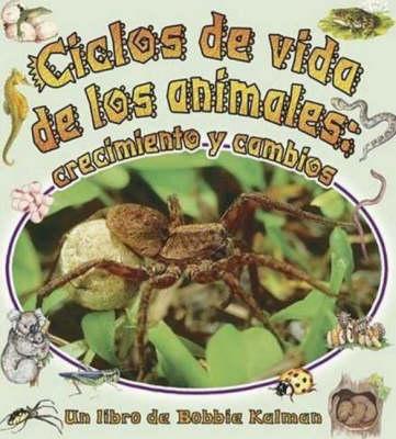 Ciclos de Vida de Los Animales (Paperback)