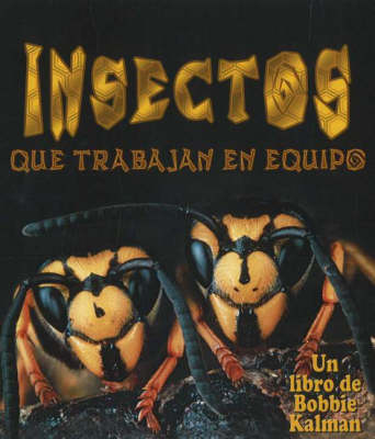 Insectos Que Trabajan En Equipo (Insects That Work Together) (Hardback)