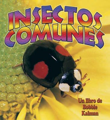 Insectos Comunes (Hardback)