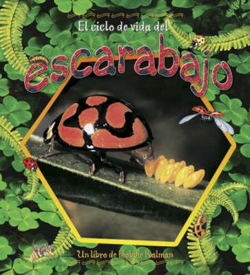 El Ciclo de Vida del Escarabajo (Hardback)