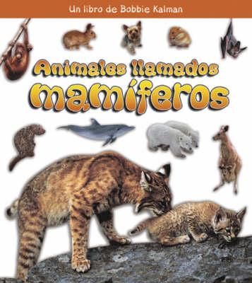 Animales Llamados Mamiferos (Paperback)