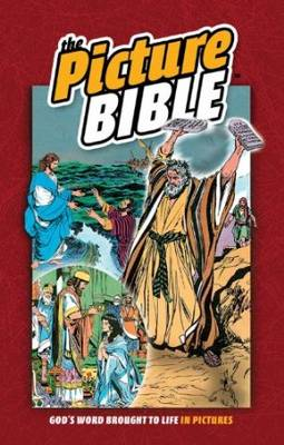The Picture Bible (Hardback)