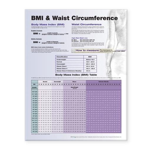 BMI and Waist Circumference (Wallchart)