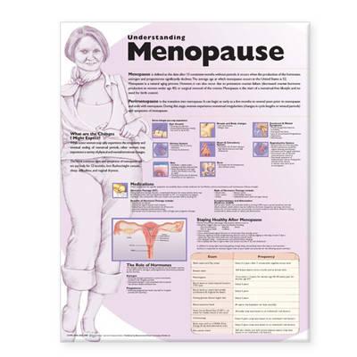 Understanding Menopause Anatomical Chart (Wallchart)