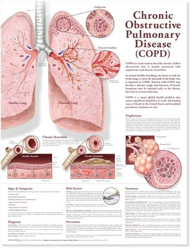 Chronic Obstructive Pulmonary Disease Anatomical Chart (Wallchart)