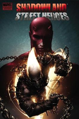 Shadowland: Thunderbolts (Hardback)