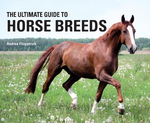 The Ultimate Guide to Horse Breeds (Hardback)