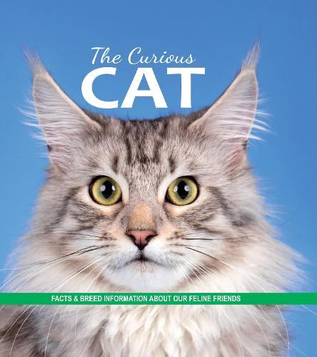 The Curious Cat: Facts and breed information on our feline friends (Paperback)