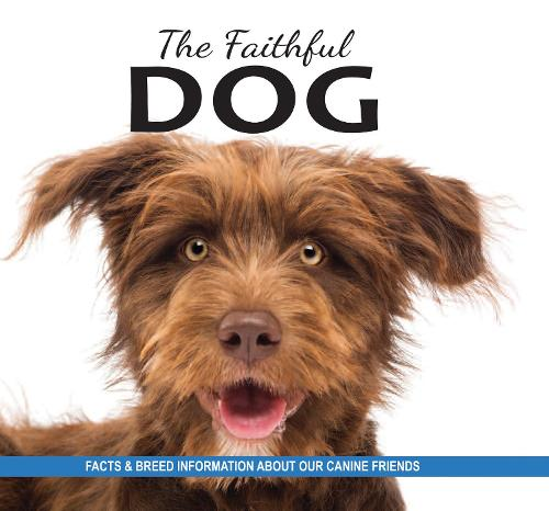 The Faithful Dog: Facts and breed information on our canine friends (Paperback)
