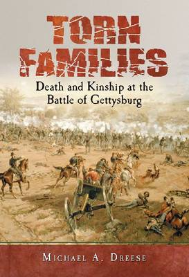 Torn Families: Death and Kinship at the Battle of Gettysburg (Paperback)