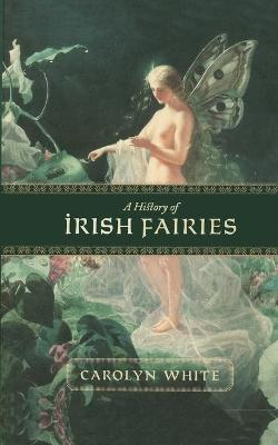 A History of Irish Fairies (Paperback)