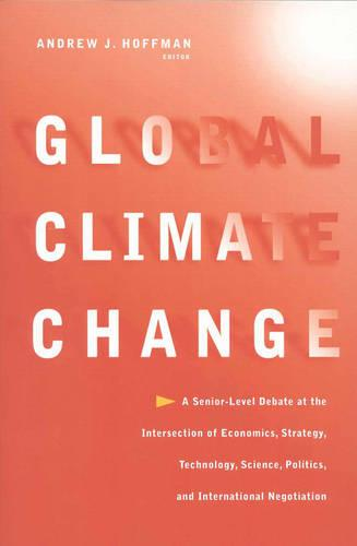 Global Climate Change: A Senior-Level Debate at the Intersection of Economics, Strategy, Technology, Science, Politics, and International Negotiation (Paperback)