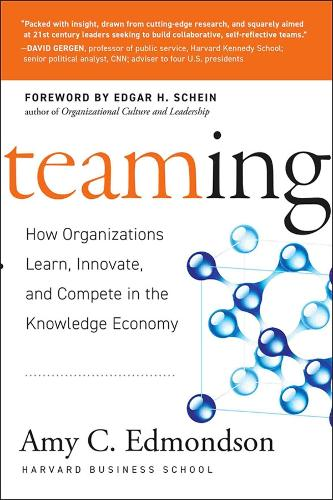 Teaming: How Organizations Learn, Innovate, and Compete in the Knowledge Economy (Hardback)