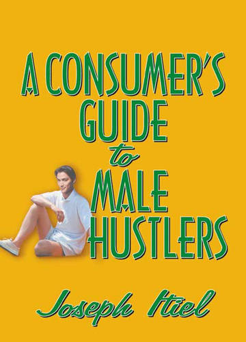 A Consumer's Guide to Male Hustlers (Hardback)