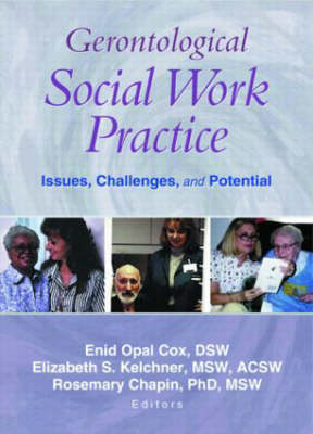 Gerontological Social Work Practice: Issues, Challenges, and Potential (Paperback)