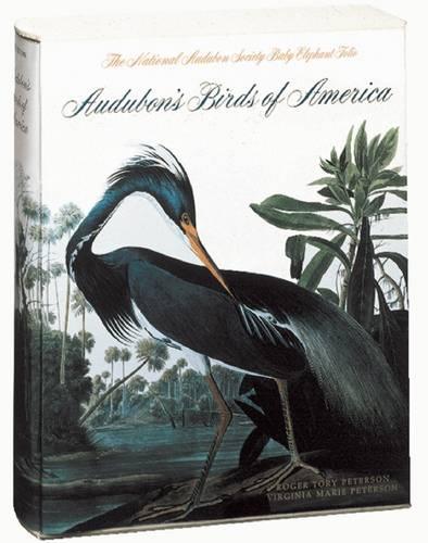 Audubon's Birds of America: The National Audubon Society (Hardback)