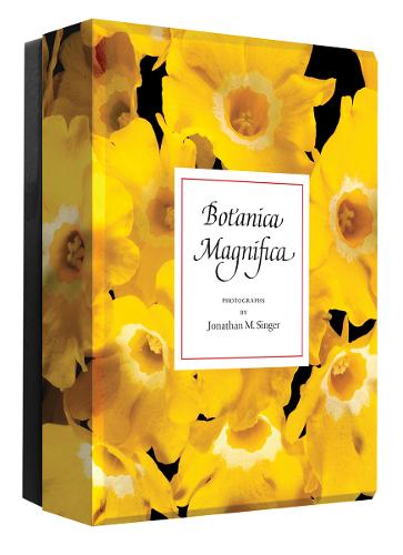 Botanica Magnifica: Detailed Notes - Detailed Notes
