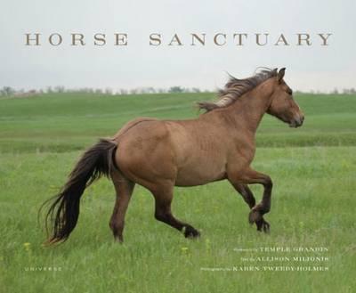 Horse Sanctuary: Running Free (Hardback)