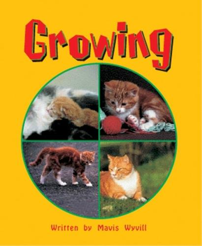 Growing Level 3 - Storysteps (Paperback)