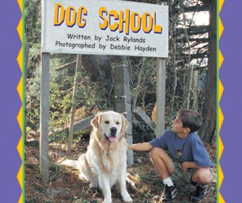 Dog School (level 17) - Storysteps (Paperback)